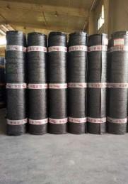 SBS自粘性改性沥青防水卷材